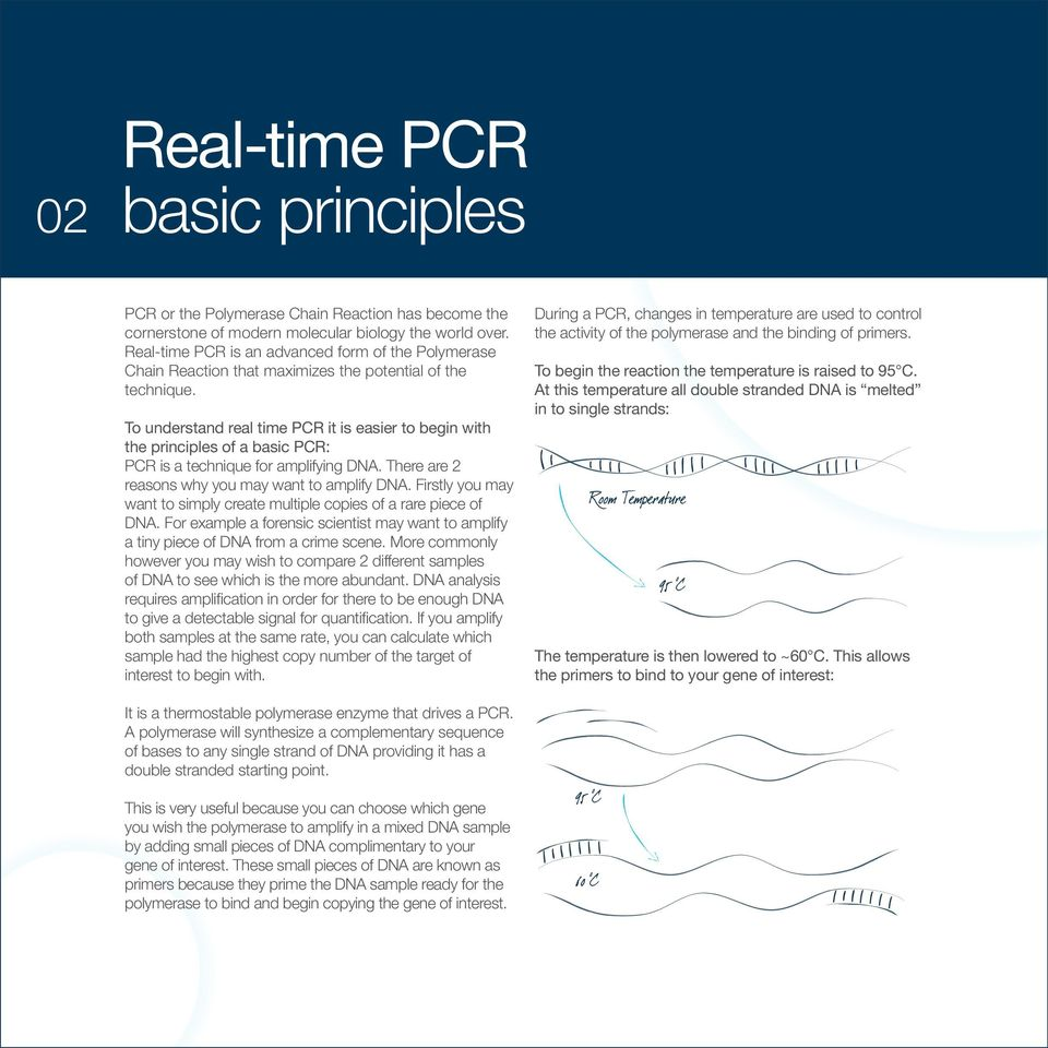 To understand real time PCR it is easier to begin with the principles of a basic PCR: PCR is a technique for amplifying DNA. There are 2 reasons why you may want to amplify DNA.