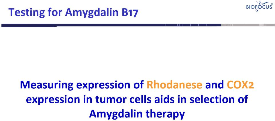 and COX2 expression in tumor