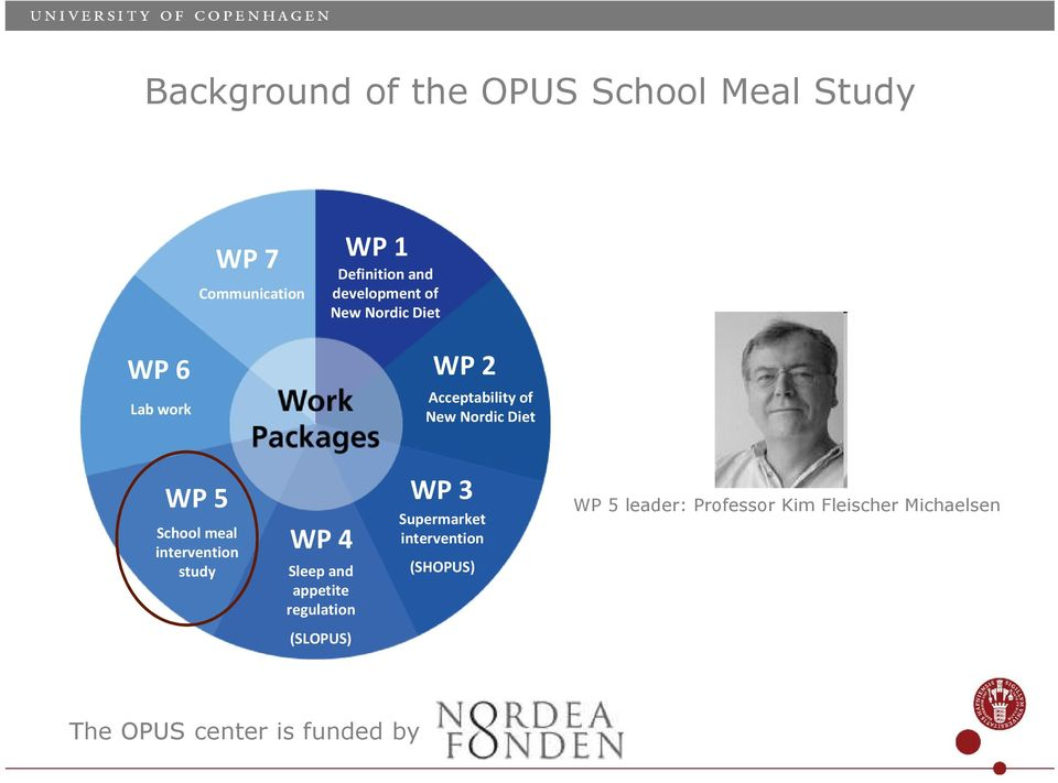 School meal intervention study WP 4 Sleep and appetite regulation WP 3 Supermarket