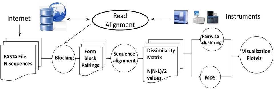 Sequence alignment Dissimilarity Matrix N(N