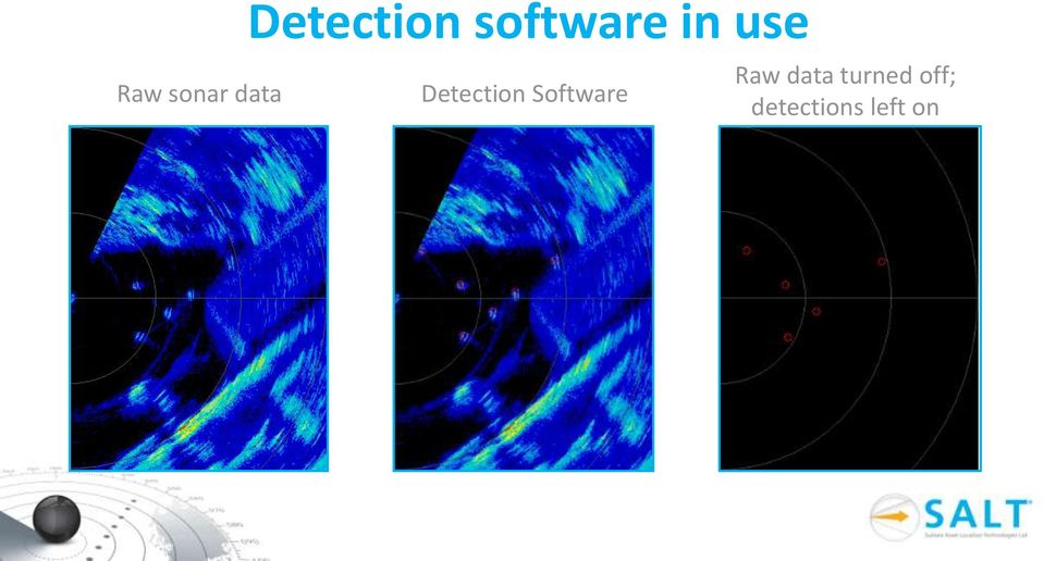 Detection Software Raw