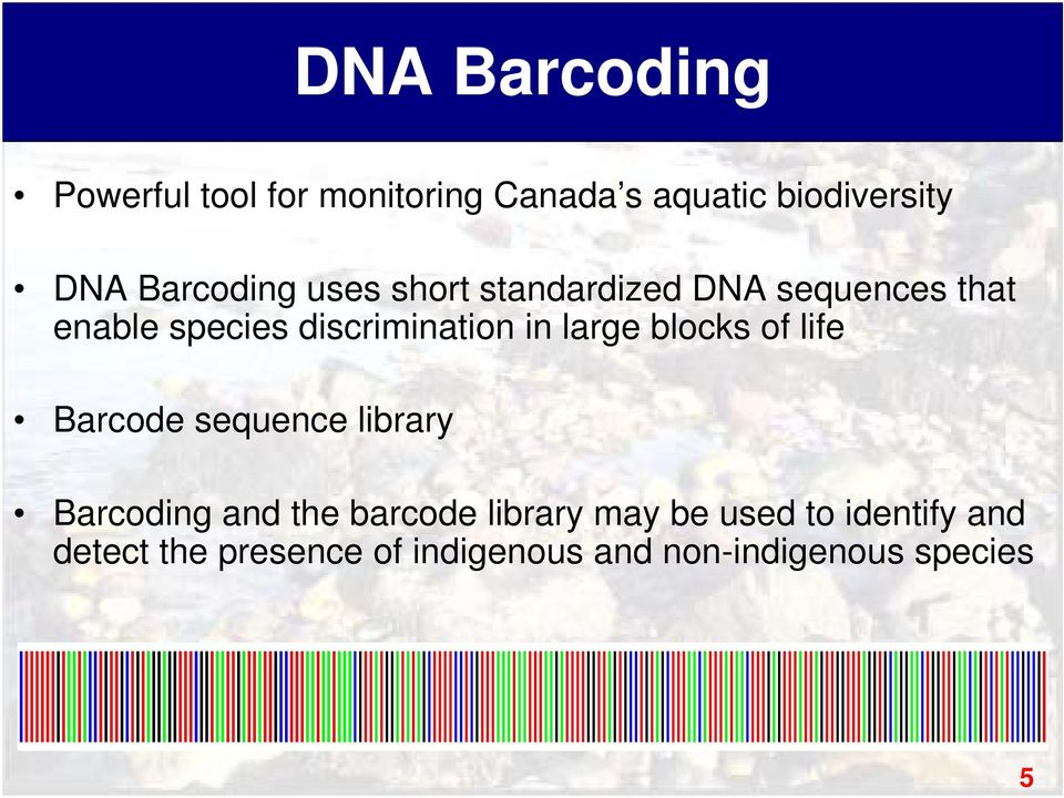 in large blocks of life Barcode sequence library Barcoding and the barcode library