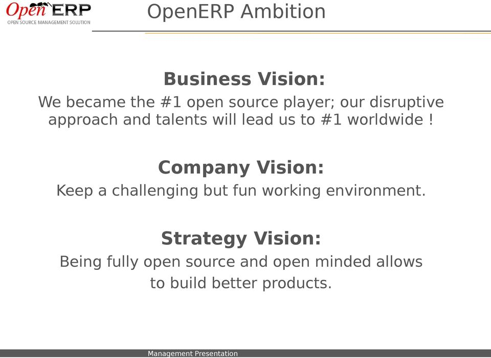 Company Vision: Keep a challenging but fun working environment.