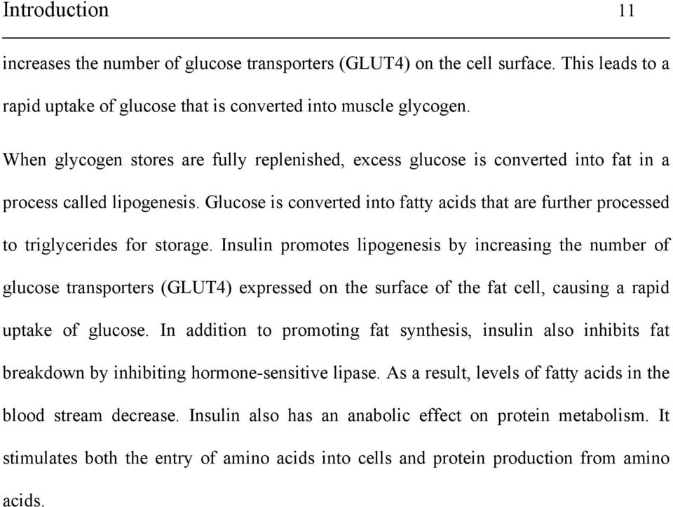Glucose is converted into fatty acids that are further processed to triglycerides for storage.