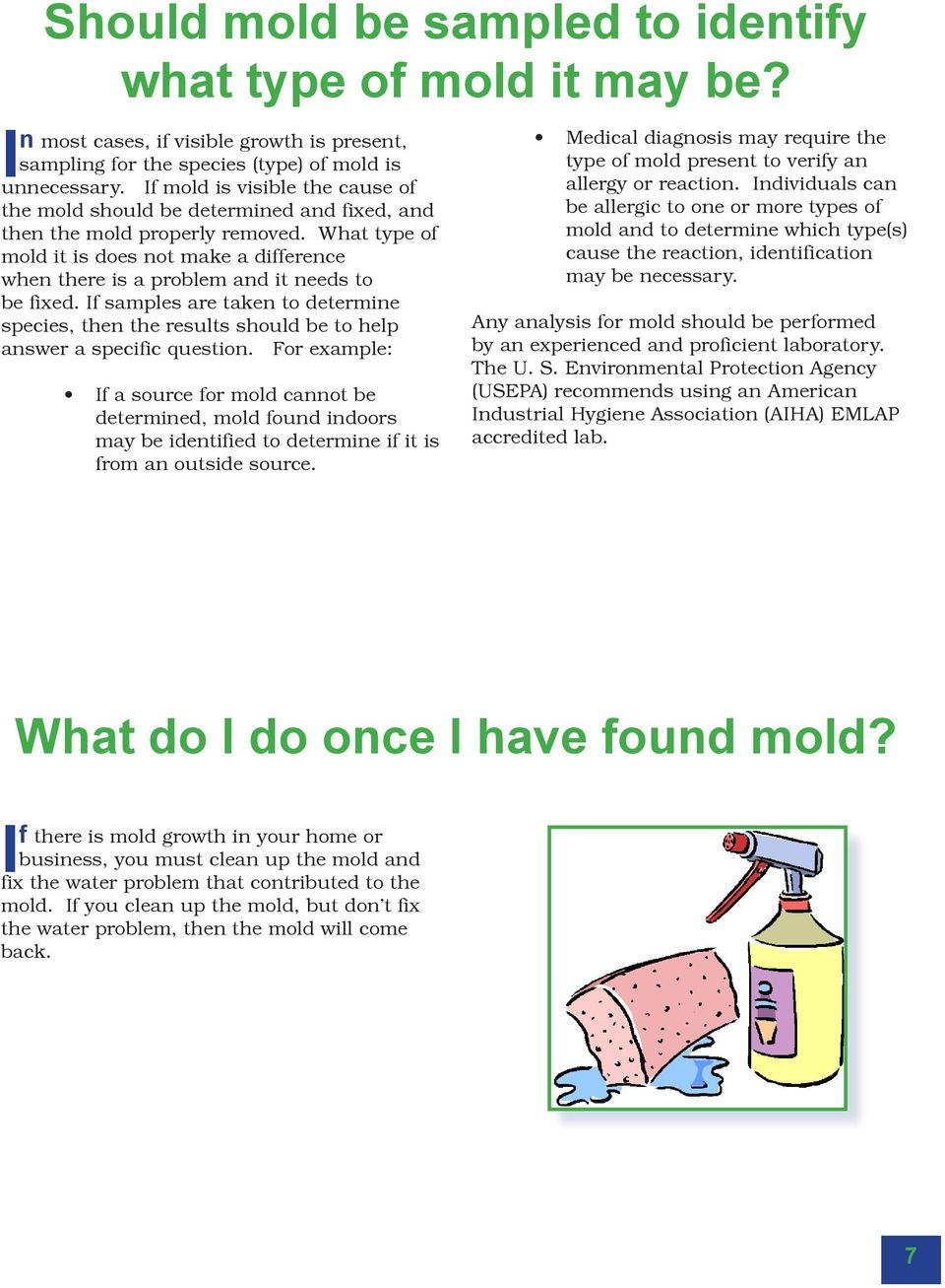 What type of mold it is does not make a difference when there is a problem and it needs to be fixed.