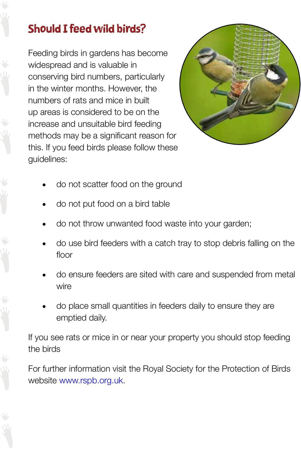 If you feed birds please follow these guidelines: do not scatter food on the ground do not put food on a bird table do not throw unwanted food waste into your garden; do use bird feeders with a catch