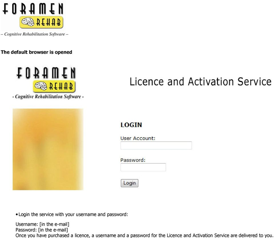 the e-mail] Once you have purchased a licence, a username and a