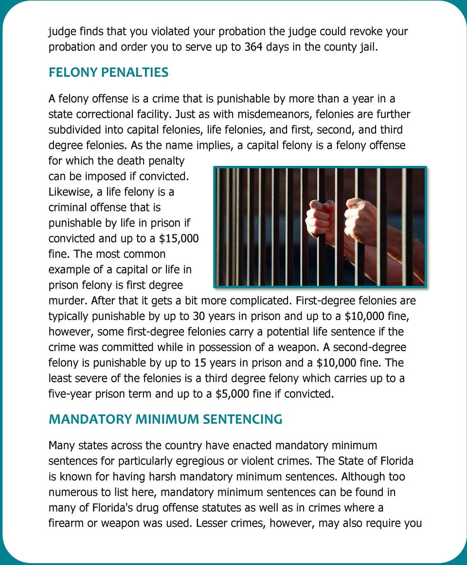 Just as with misdemeanors, felonies are further subdivided into capital felonies, life felonies, and first, second, and third degree felonies.