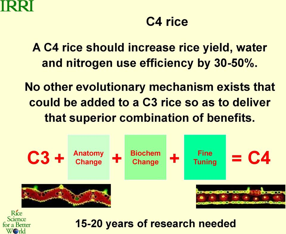 No other evolutionary mechanism exists that could be added to a C3 rice so