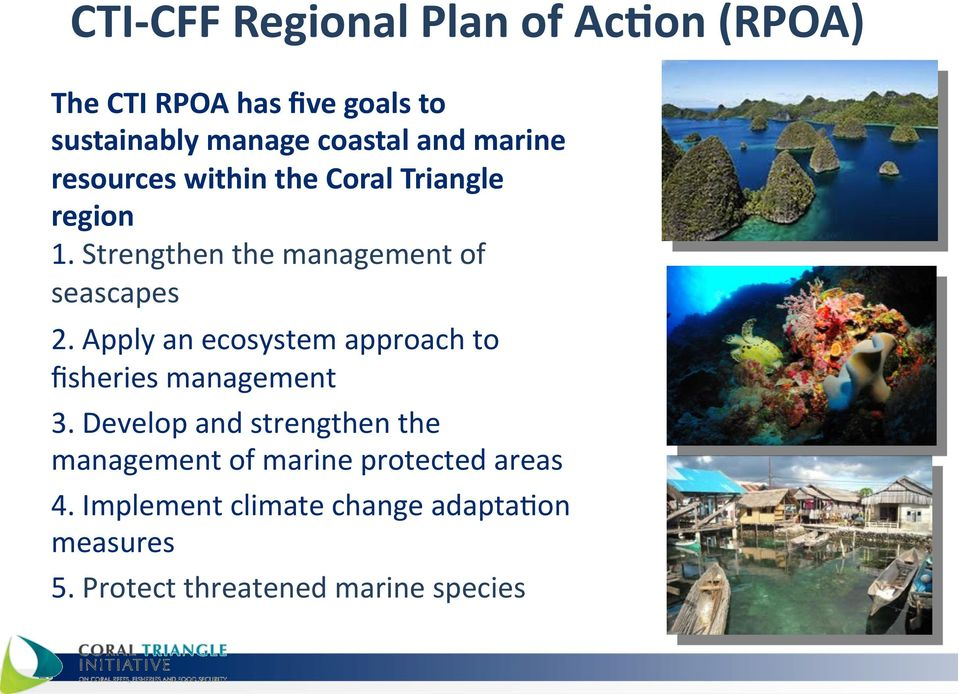 Coral Triangle region 1. Strengthen the management of seascapes 2.