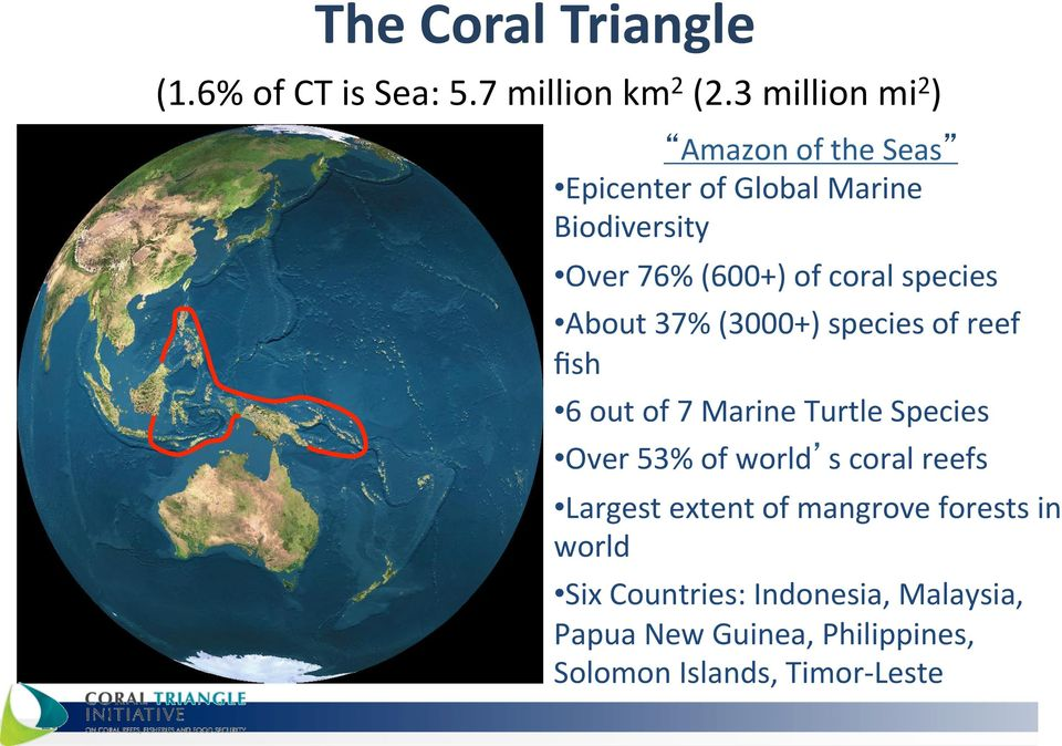 species About 37% (3000+) species of reef fish 6 out of 7 Marine Turtle Species Over 53% of world s