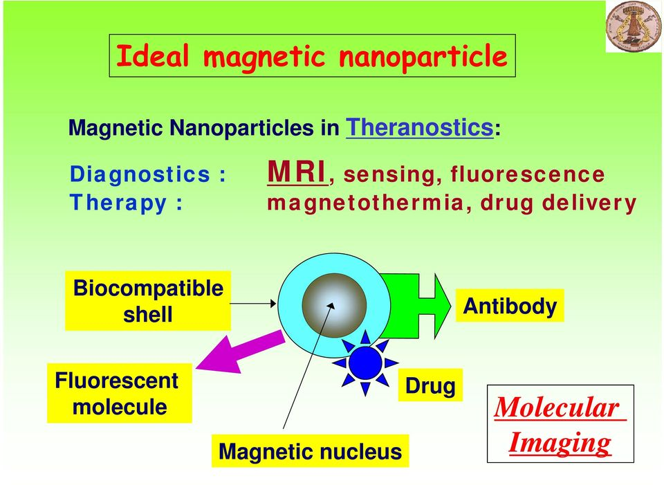 fluorescence magnetothermia, drug delivery Biocompatible