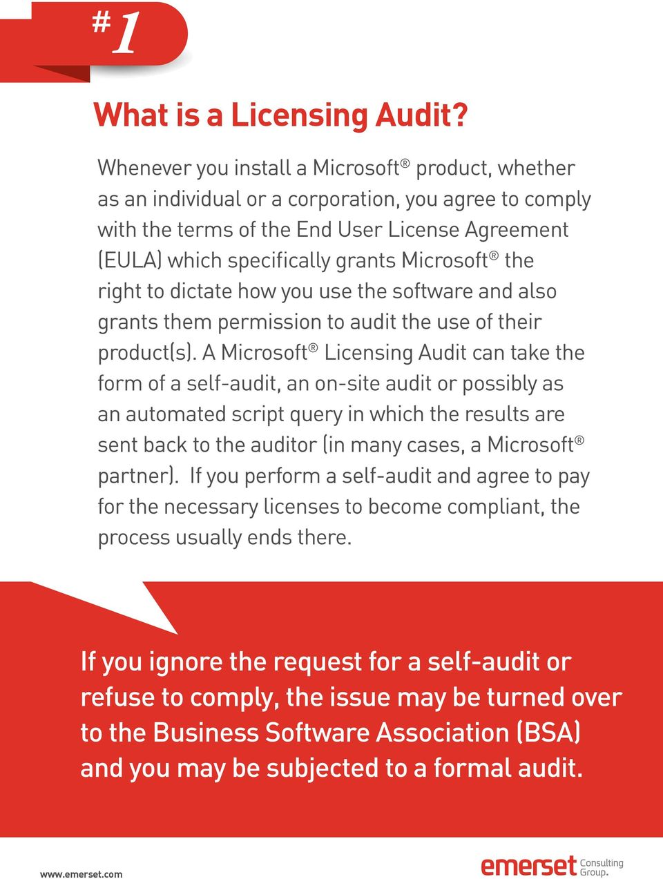the right to dictate how you use the software and also grants them permission to audit the use of their product(s).