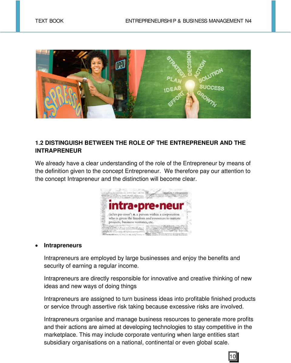 Intrapreneurs Intrapreneurs are employed by large businesses and enjoy the benefits and security of earning a regular income.