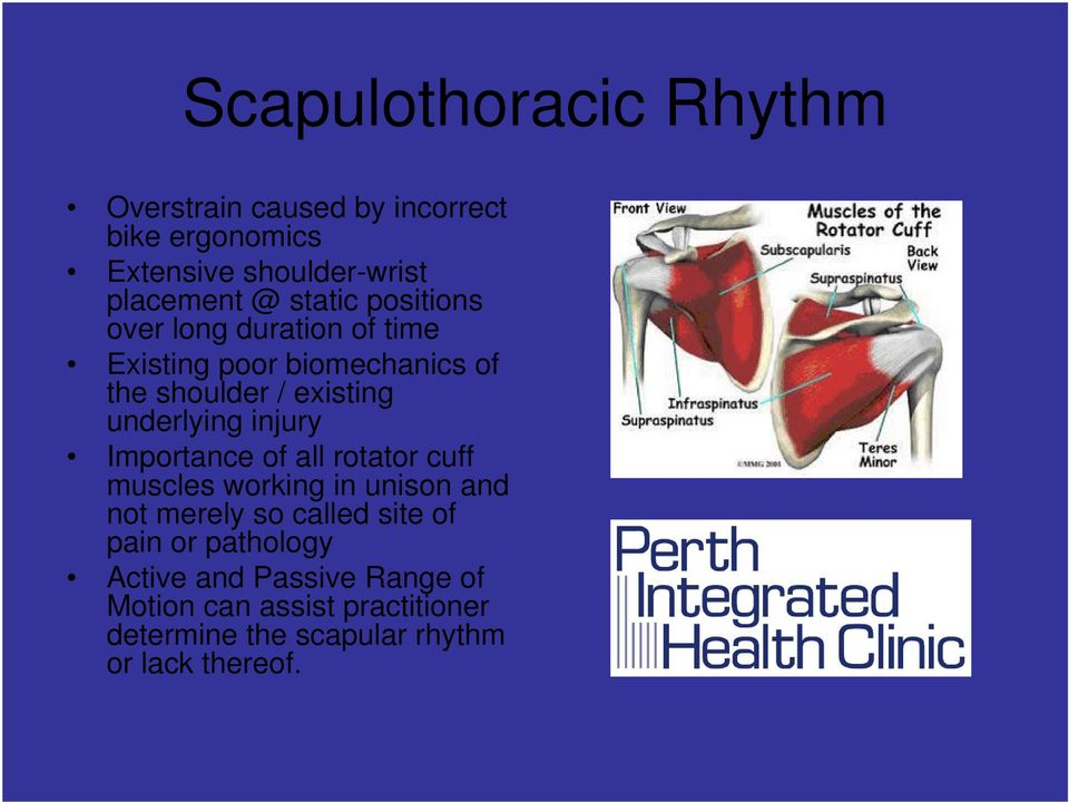 injury Importance of all rotator cuff muscles working in unison and not merely so called site of pain or