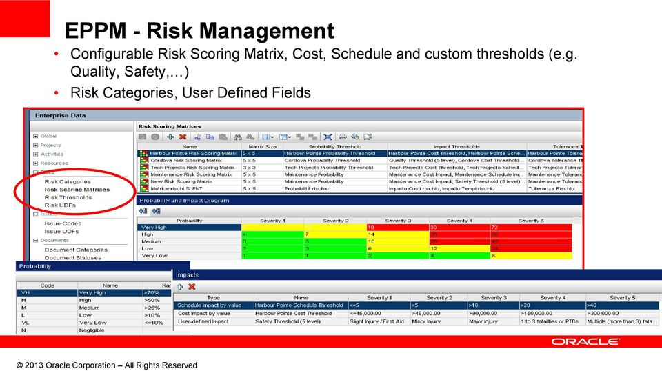 Quality, Safety, ) Risk Categories, User Defined