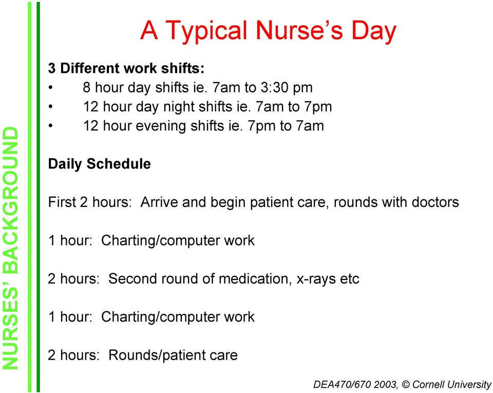 7pm to 7am Daily Schedule First 2 hours: Arrive and begin patient care, rounds with doctors 1 hour: