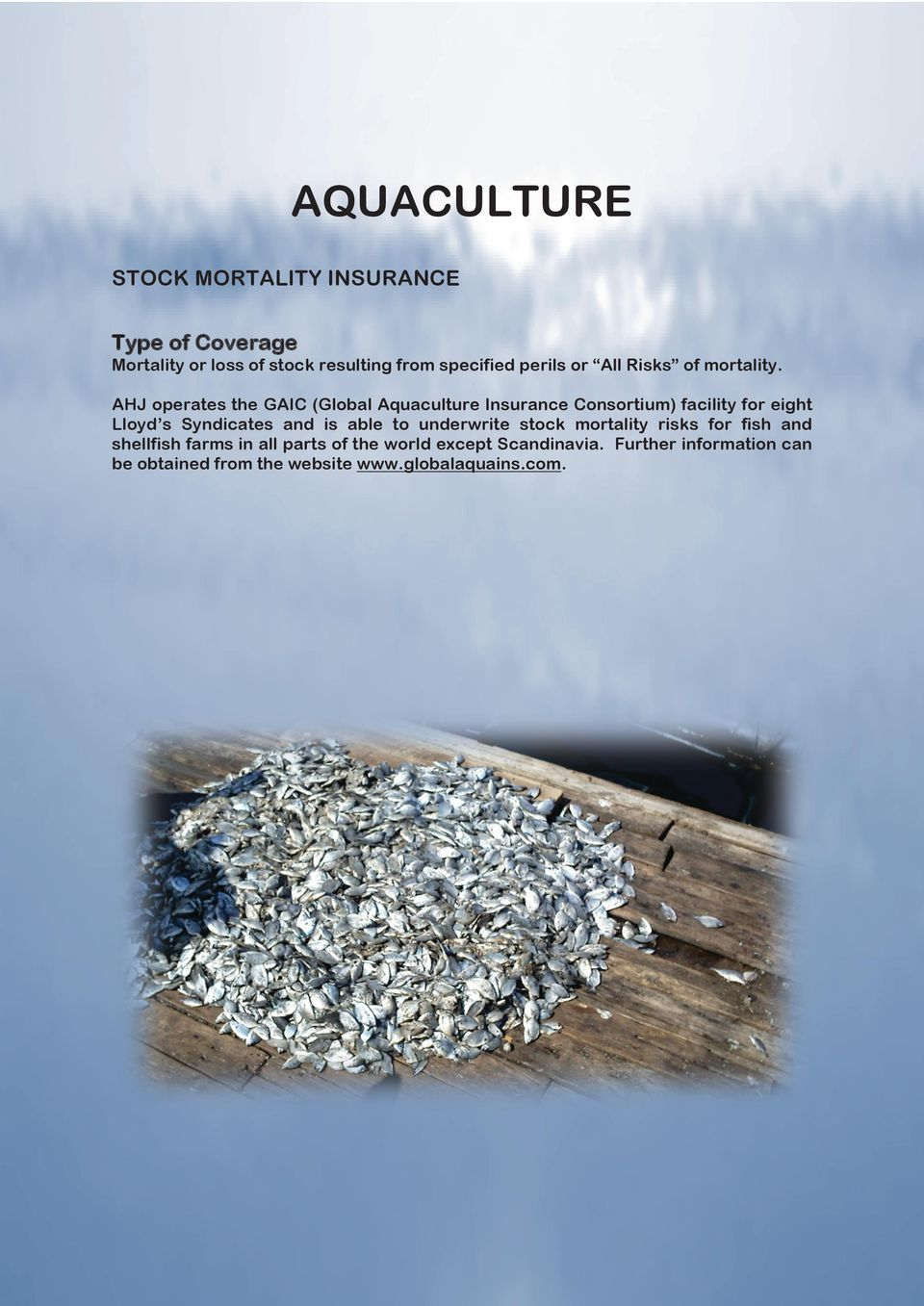 AHJ operates the GAIC (Global Aquaculture Insurance Consortium) facility for eight Lloyd s Syndicates and