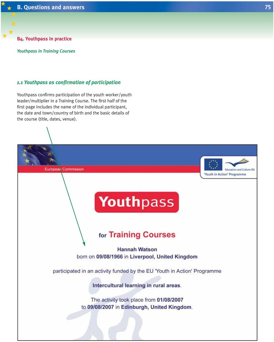 youth worker/youth leader/multiplier in a Training Course.