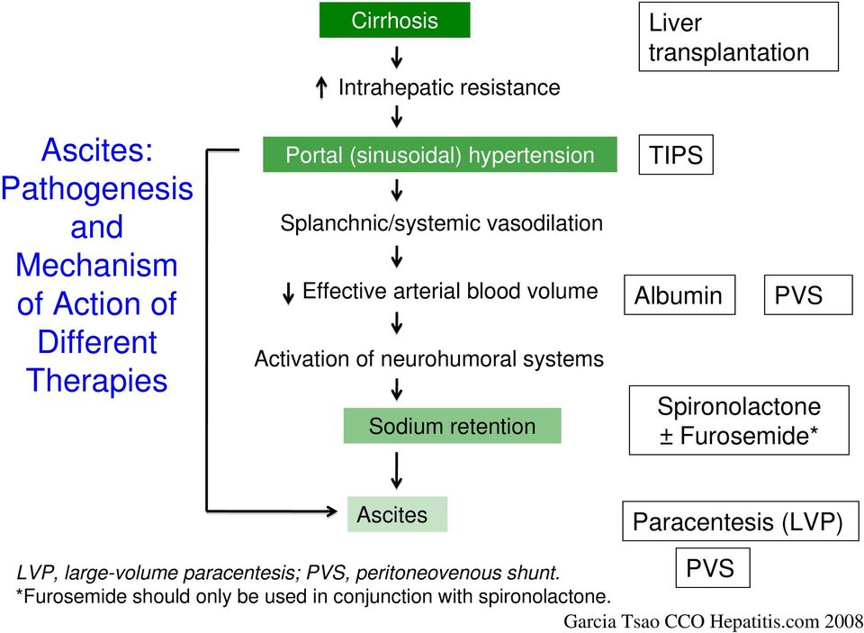 retention Liver transplantation TIPS Albumin PVS Spironolactone ± Furosemide* Ascites Paracentesis (LVP) PVS LVP, large-volume