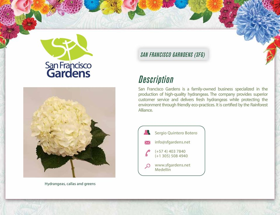 The company provides superior customer service and delivers fresh hydrangeas while protecting the environment