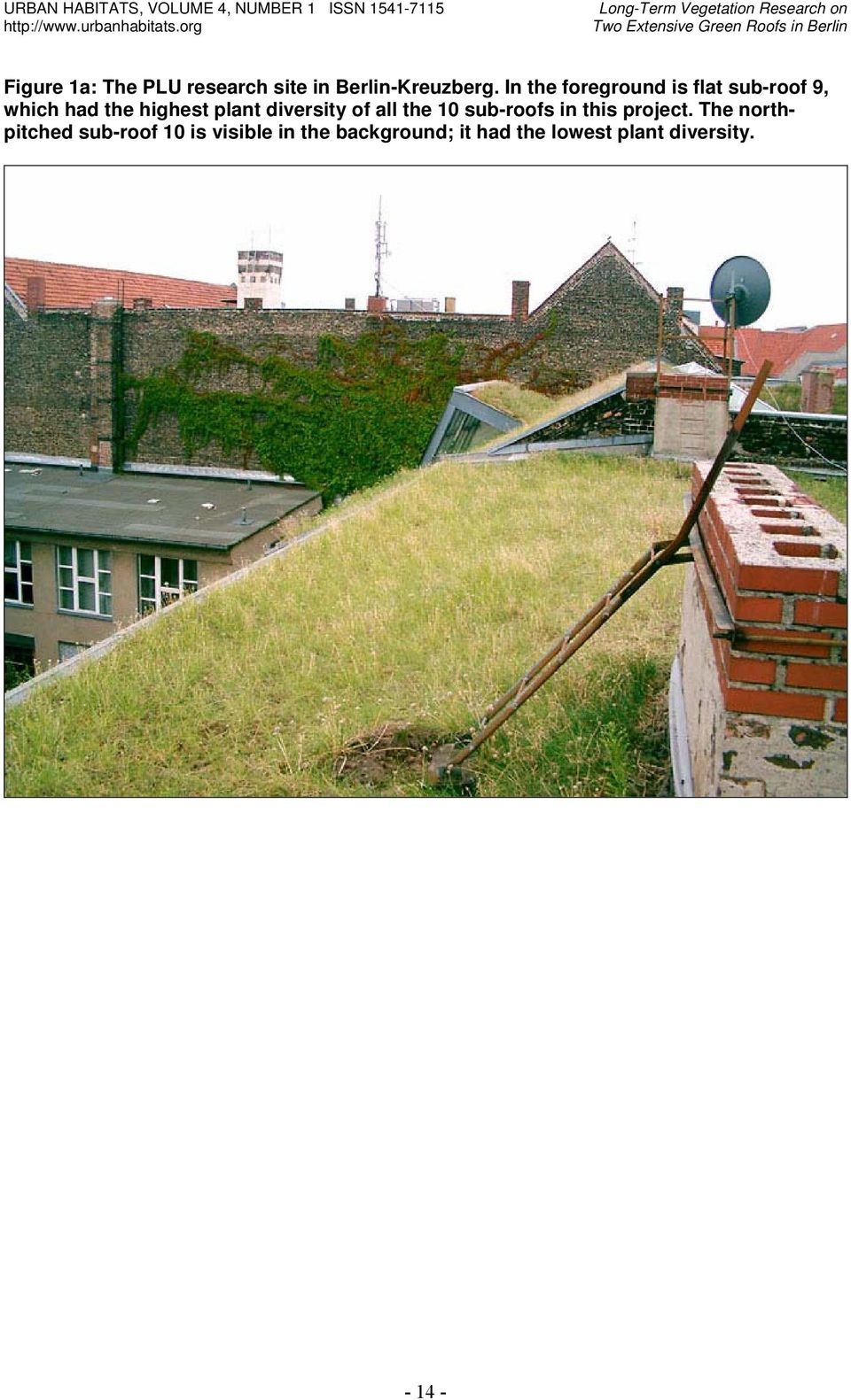 In the foreground is flat sub-roof 9, which had the highest plant diversity of all