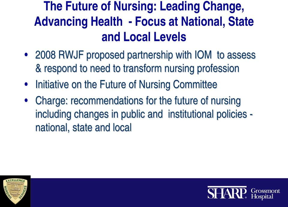nursing profession Initiative on the Future of Nursing Committee Charge: recommendations for