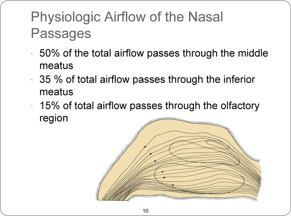 of total airflow passes through the inferior meatus