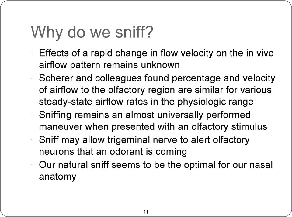 and velocity of airflow to the olfactory region are similar for various steady-state airflow rates in the physiologic range