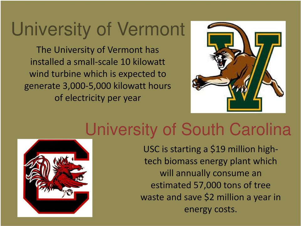 University of South Carolina USC is starting a $19 million hightech biomass energy plant which