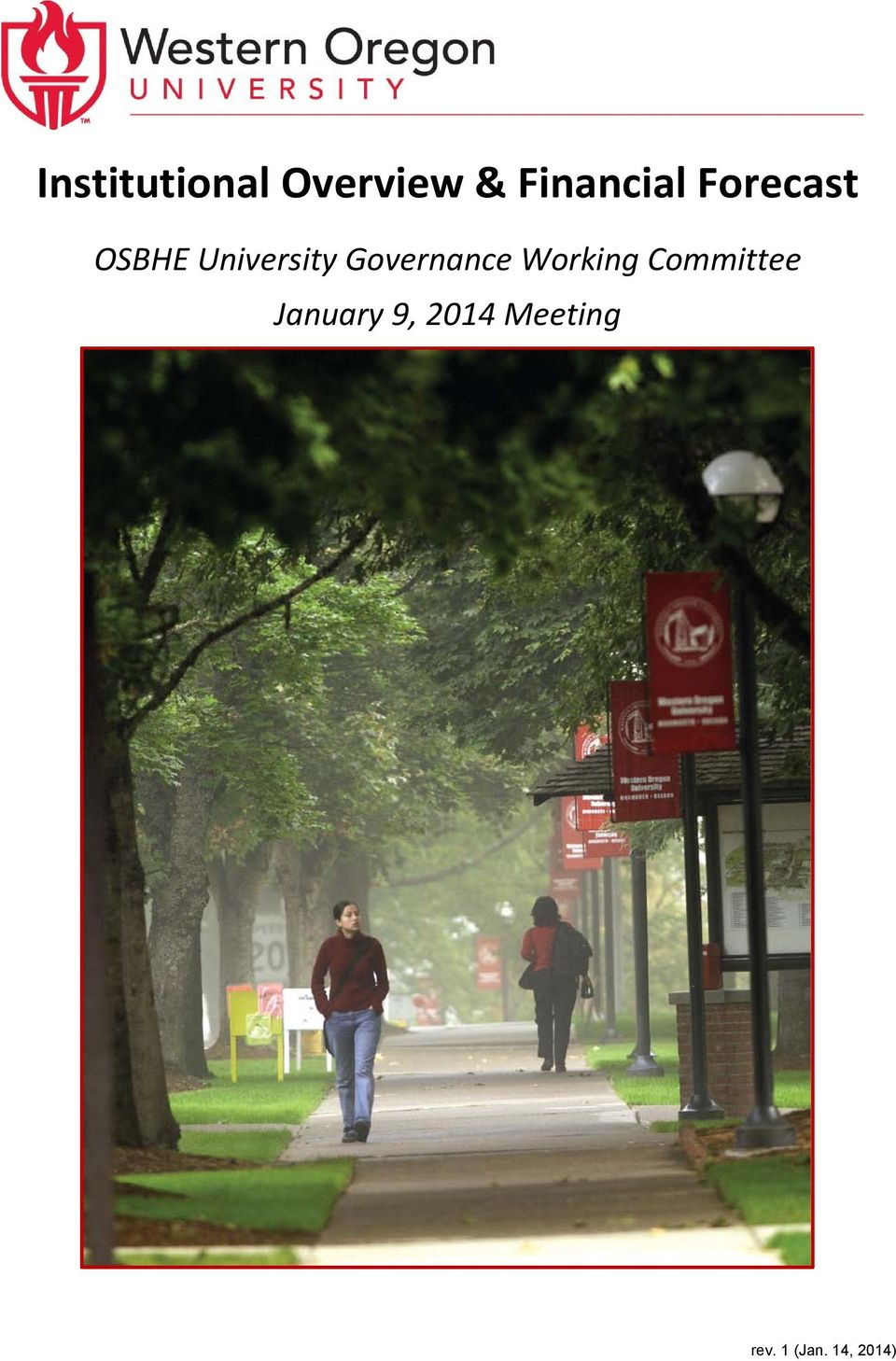 University Governance Working
