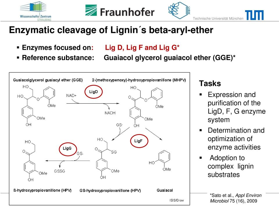 purification of the LigD, F, G enzyme system Determination and optimization of enzyme