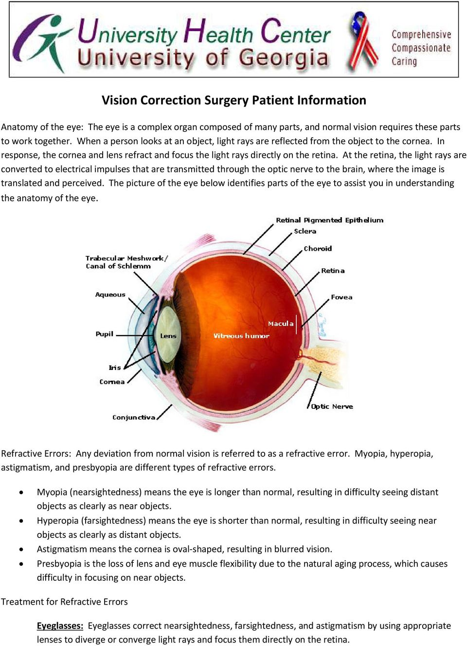 At the retina, the light rays are converted to electrical impulses that are transmitted through the optic nerve to the brain, where the image is translated and perceived.