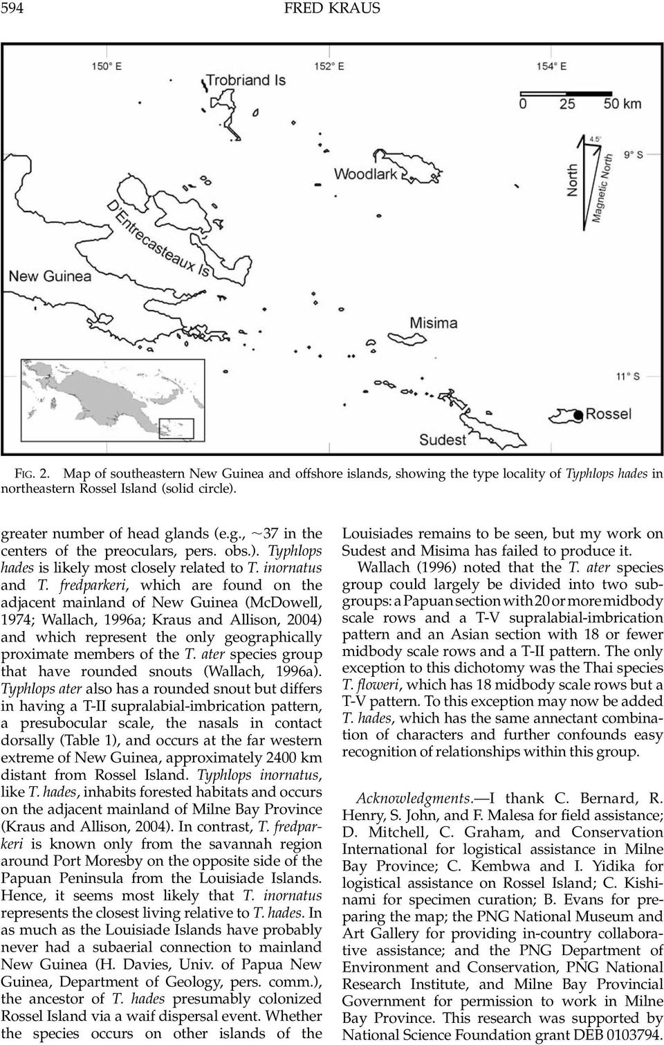 fredparkeri, which are found on the adjacent mainland of New Guinea (McDowell, 1974; Wallach, 1996a; Kraus and Allison, 2004) and which represent the only geographically proximate members of the T.