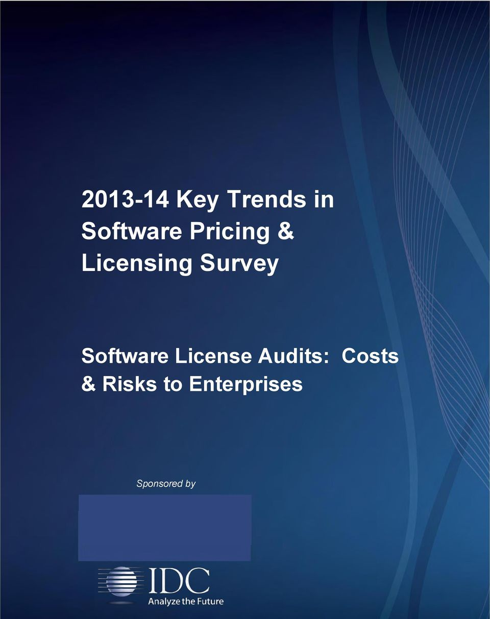 Software License Audits: Costs