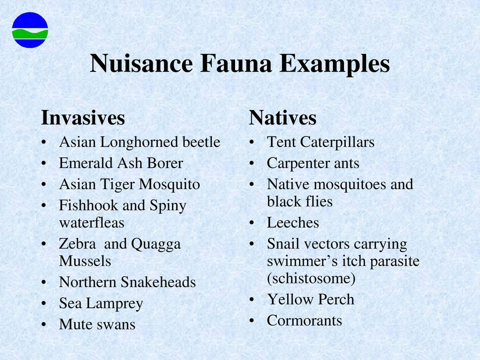 Lamprey Mute swans Natives Tent Caterpillars Carpenter ants Native mosquitoes and black