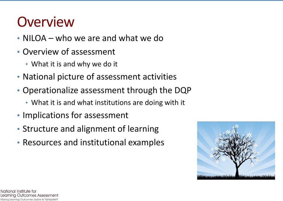through the DQP What it is and what institutions are doing with it Implications