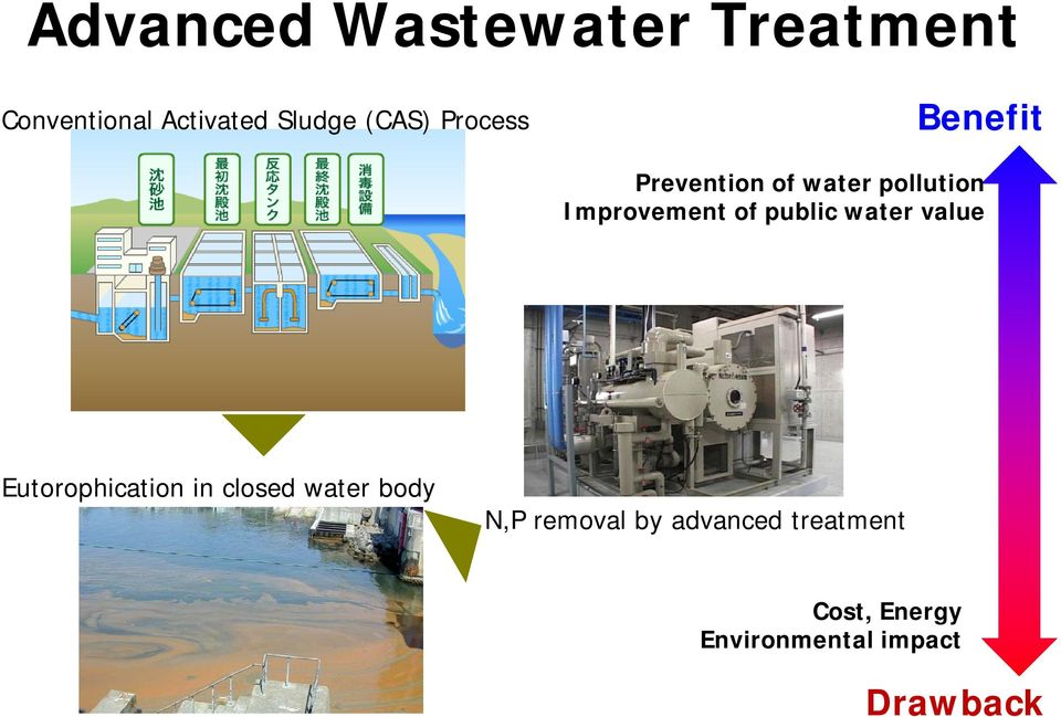 of public water value Eutorophication in closed water body N,P