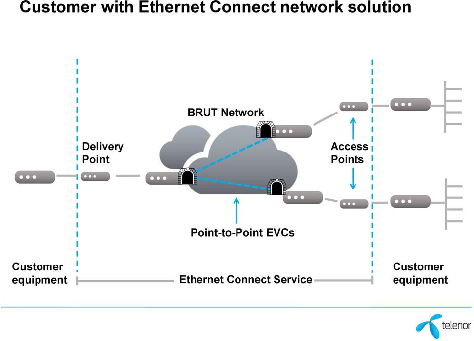 Access Points Point-to-Point EVCs Customer