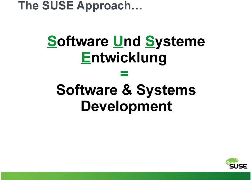 Software & Systems
