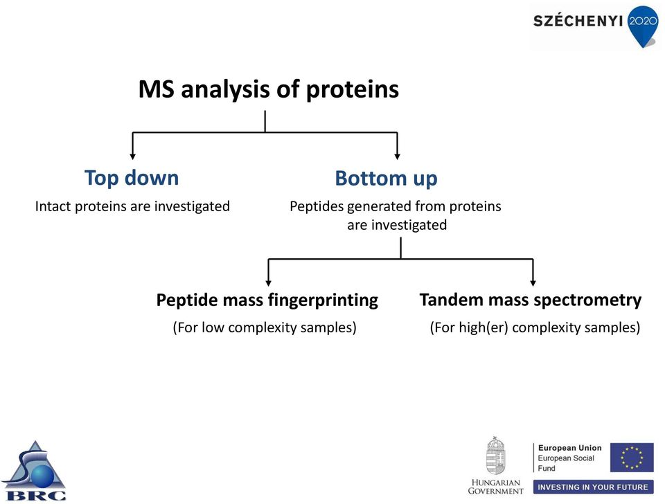 investigated Peptide mass fingerprinting (For low complexity