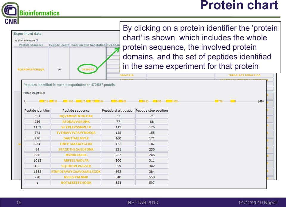 protein sequence, the involved protein domains, and the