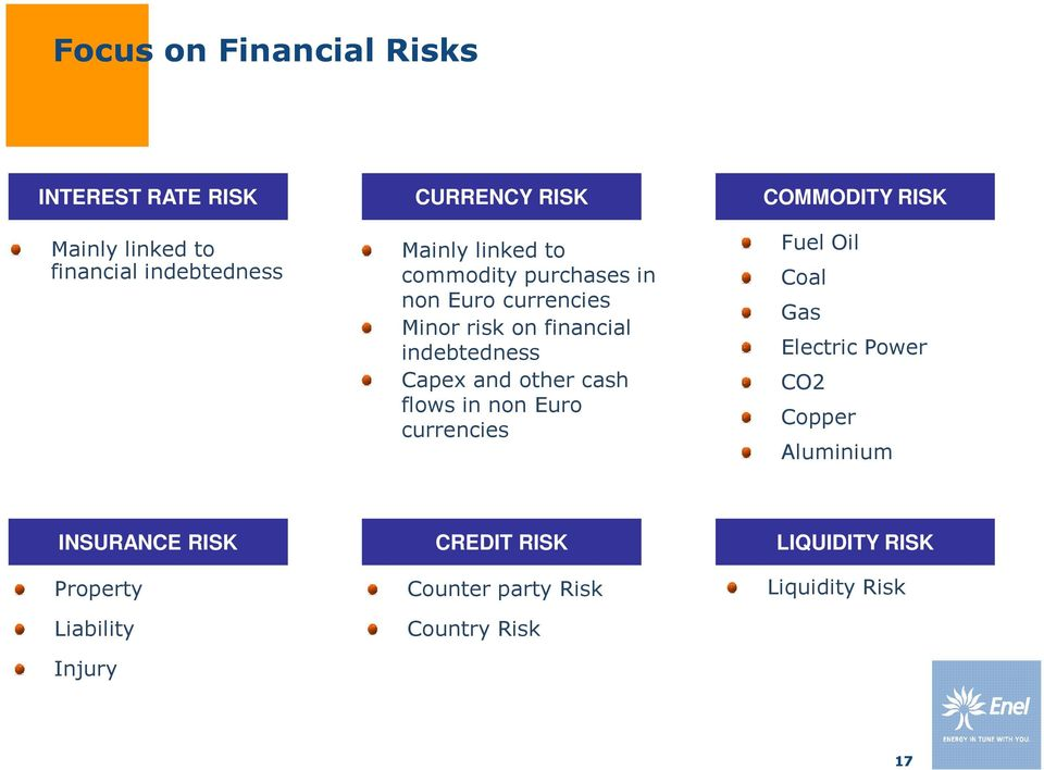 cash flows in non Euro currencies COMMODITY RISK Fuel Oil Coal Gas Electric Power CO2 Copper Aluminium