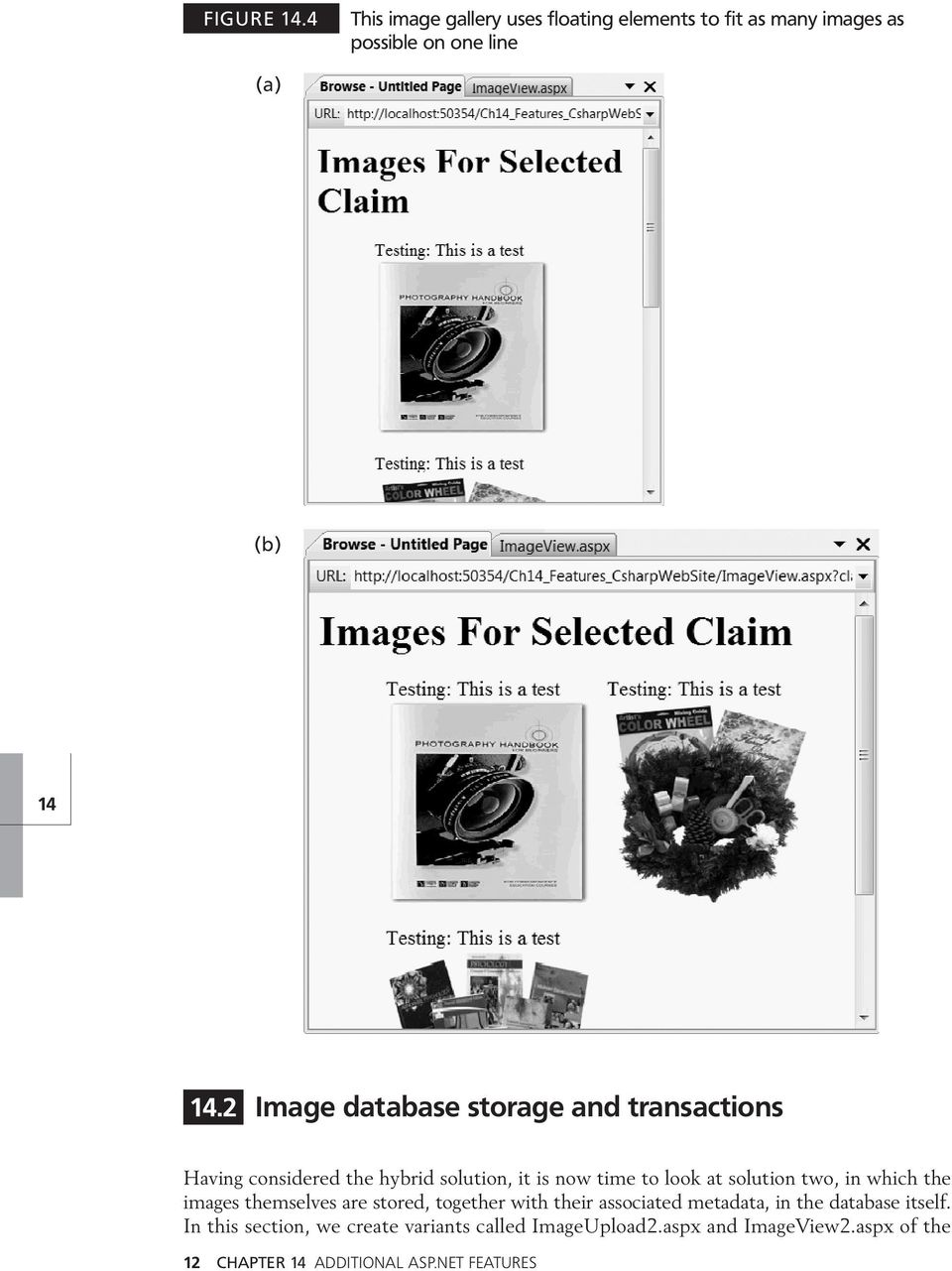 solution two, in which the images themselves are stored, together with their associated metadata, in the database