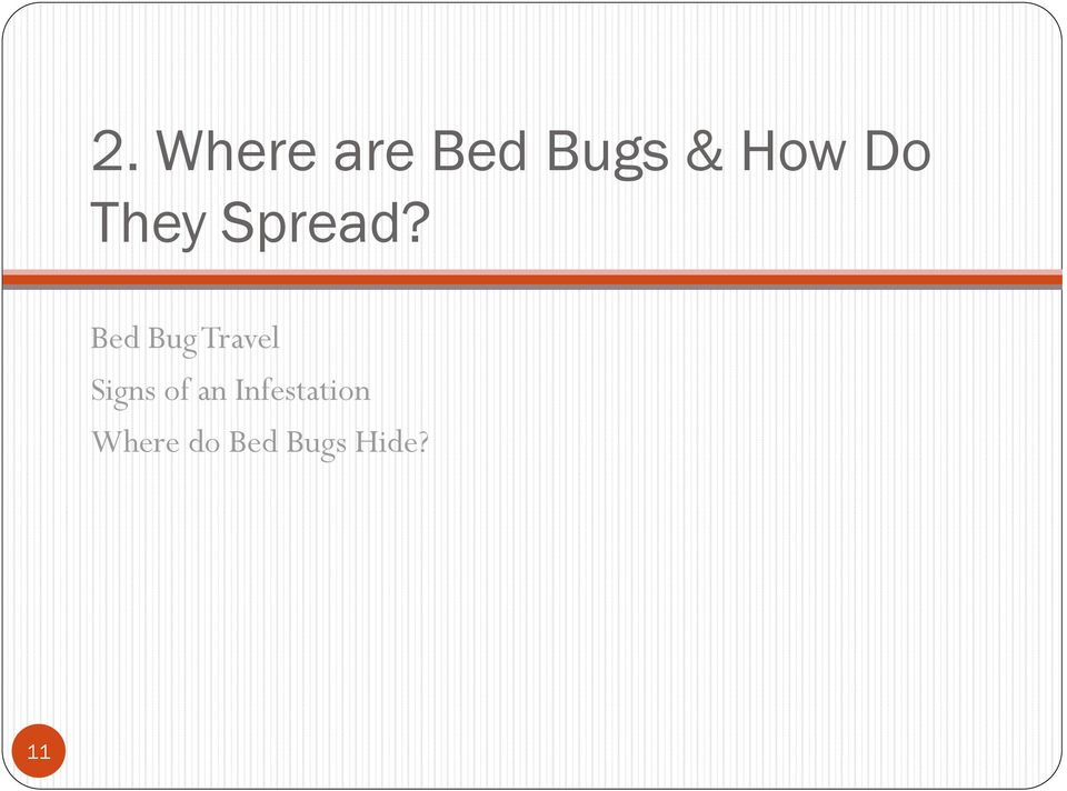 Bed Bug Travel Signs of an