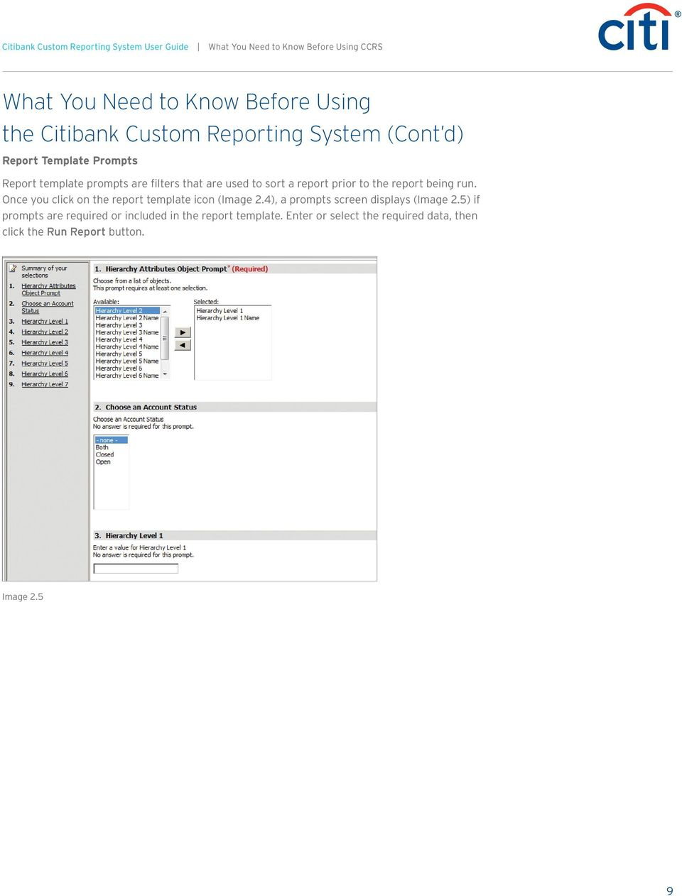 report prior to the report being run. Once you click on the report template icon (Image 2.4), a prompts screen displays (Image 2.