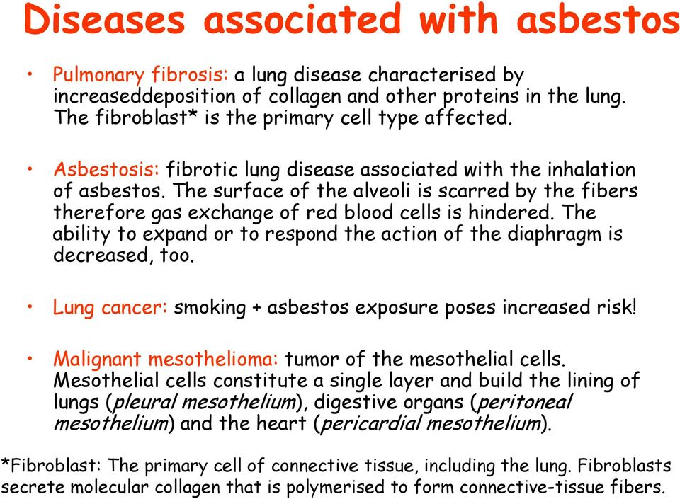 The ability to expand or to respond the action of the diaphragm is decreased, too. Lung cancer: smoking + asbestos exposure poses increased risk!