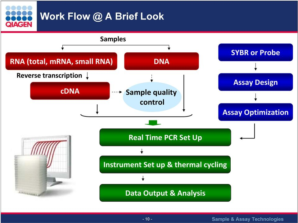 Probe Assay Design Assay Optimization Real Time PCR Set Up