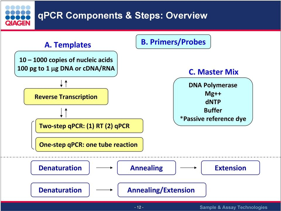 Transcription Two step qpcr: (1) RT (2) qpcr C.