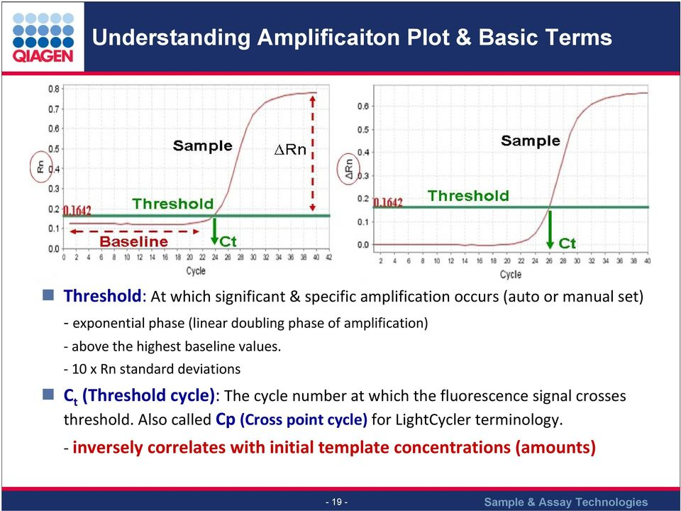 10 x Rn standard deviations C t (Threshold cycle): The cycle number at which the fluorescence signal crosses threshold.